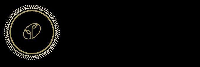 Queensland Plastic Surgery Logo